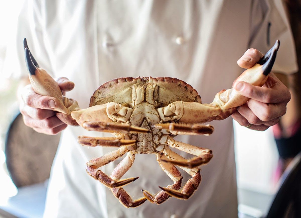 chef in whites holding a crab
