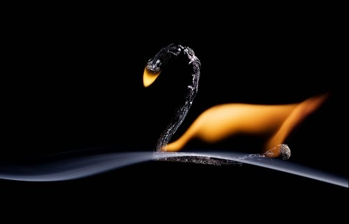 03-Match-Swan-Flame-Russian-Photographer-Illustrator-Stanislav-Aristov-PolTergejst-www-designstack-co