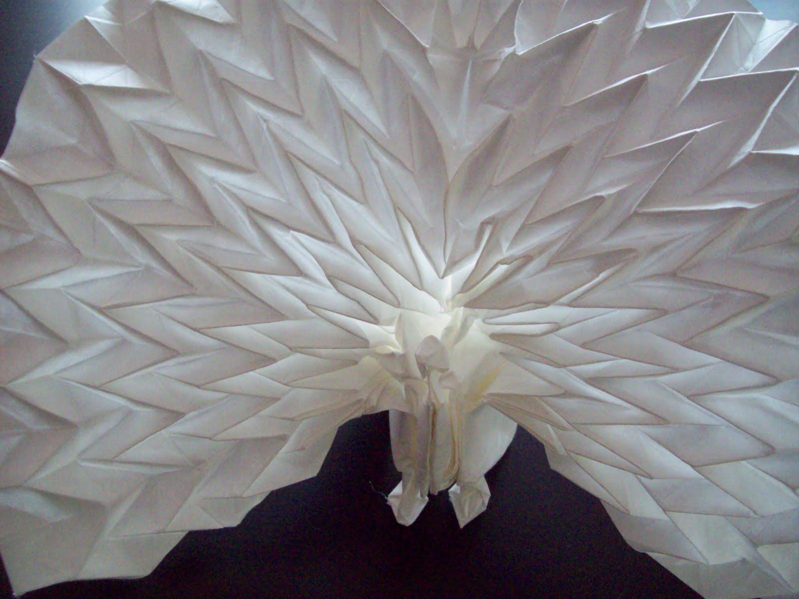 A Successful Origami Peacock