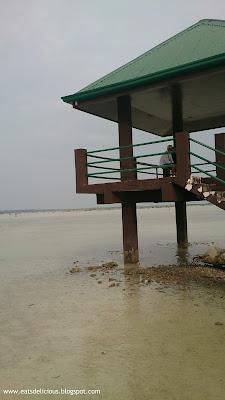 Olango Island in Cebu travel diary wildlife sanctuary 3