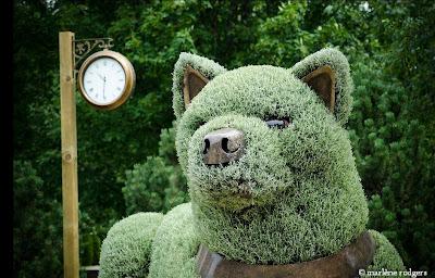 Obras de arte en arbustos lobo