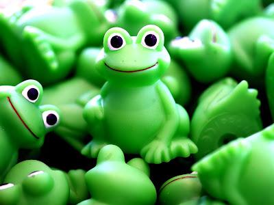 Frog green desktop background wallpapers