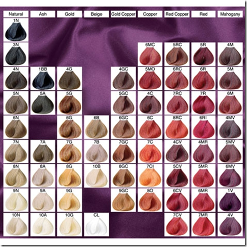 Lena hoschek how to use hair color chart shades of red for Color touch salon