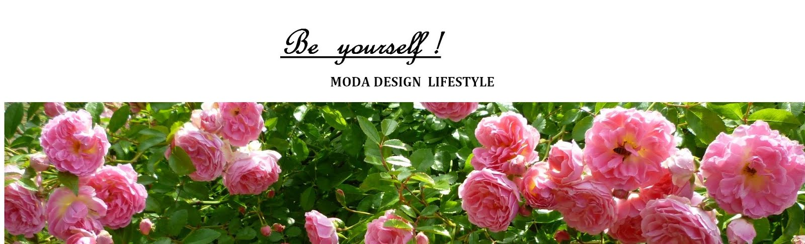 MODA      DESIGN      LIFESTYLE