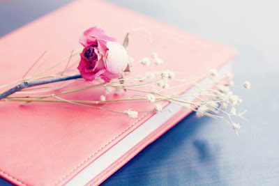 flor,livro,rosa,pink,