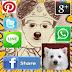Moman Camera Share - Ứng dụng giúp lưu và chia sẻ ảnh từ HighTalk