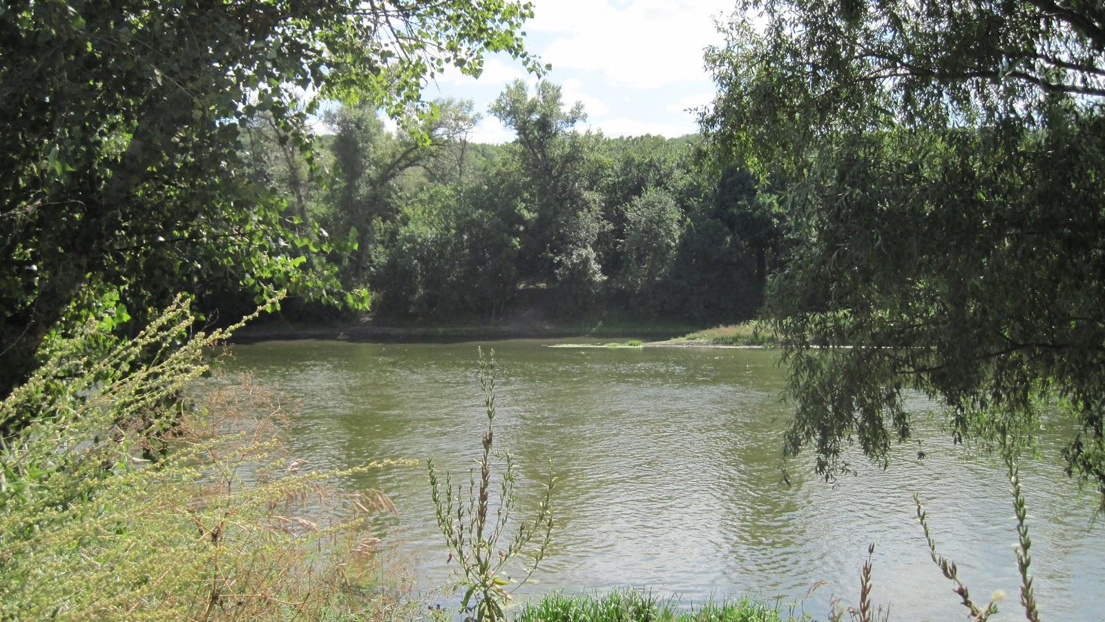 рыбалка луганск северский донец