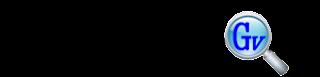Gonvisor Logo