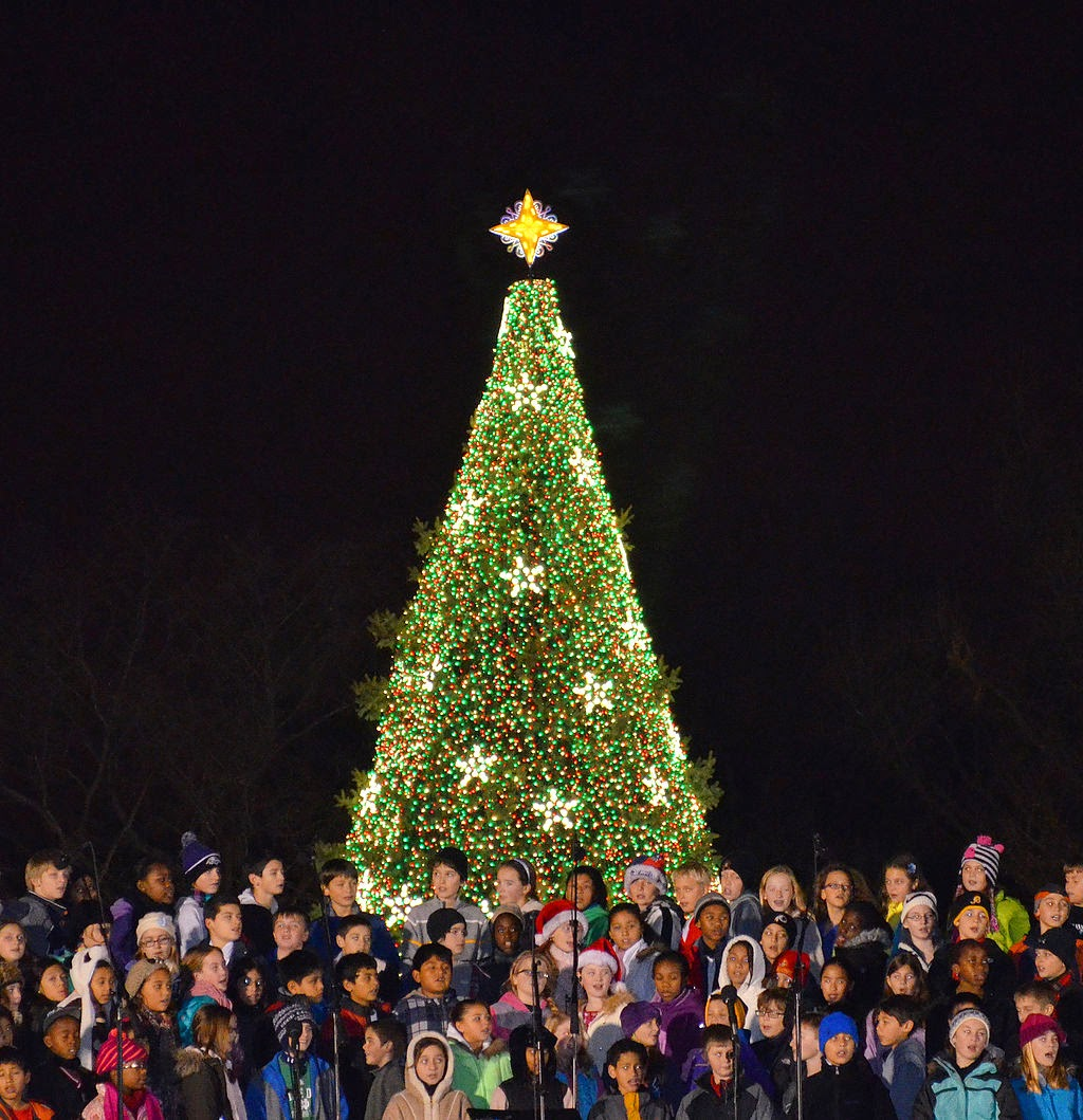 Warrendale (Detroit) Blog: Girls can code the National Christmas Tree