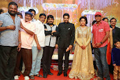 Amala paul vijay reception-thumbnail-27
