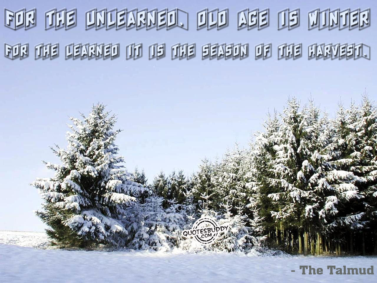 Funny Quotes About Winter. QuotesGram