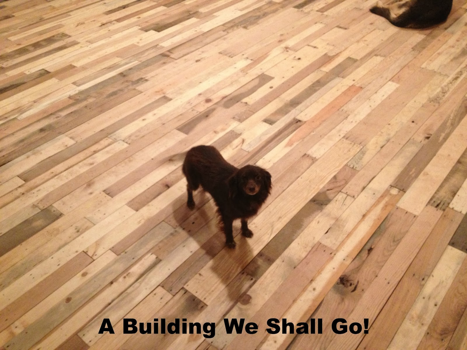 A building we shall go the art of pallet wood flooring solutioingenieria Gallery