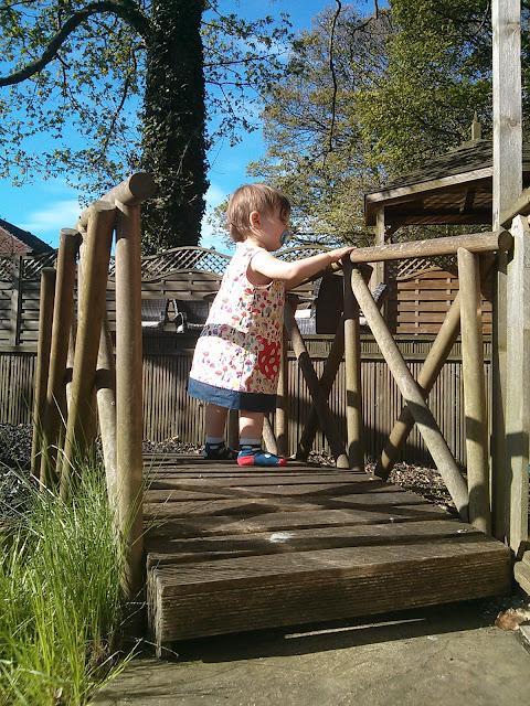 curious and exploring the garden