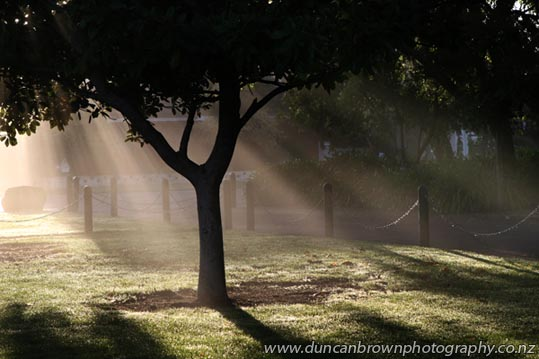 Early morning sunrays photograph