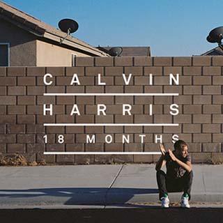 Calvin Harris – Drinking From The Bottle Lyrics | Letras | Lirik | Tekst | Text | Testo | Paroles - Source: musicjuzz.blogspot.com