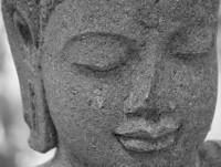 Camino al Buda