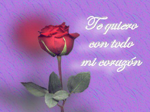 tarjetas de amor te quiero con flores