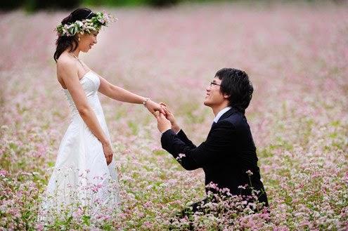 Địa điểm chụp ảnh cưới đẹp nhất miền Bắc 3