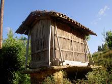 Mis poemas traducidos al Gallego