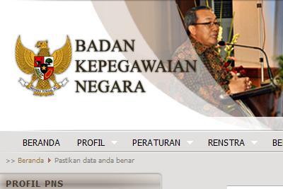 PNS dapat melihat data status kepegawaiannya di website BKN