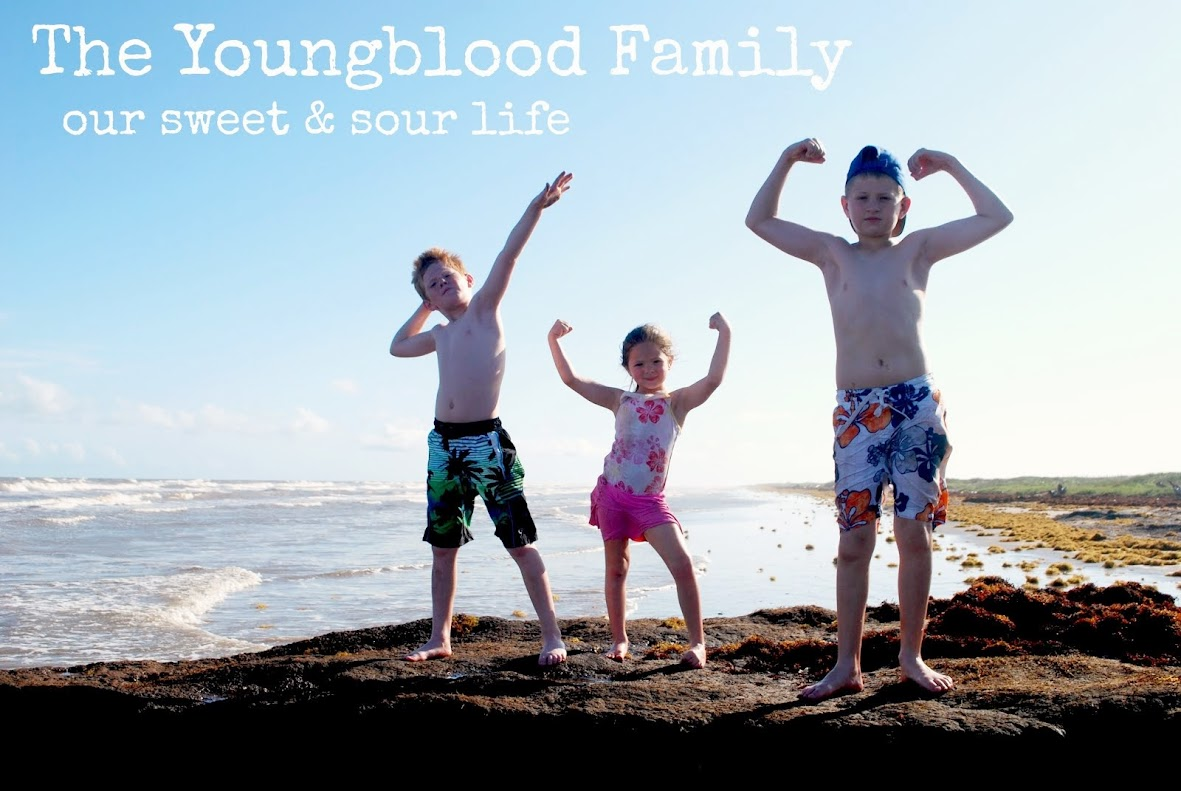 The Youngblood Family; Our Sweet and Sour Life