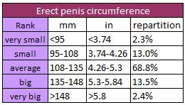 Penis thickness normal