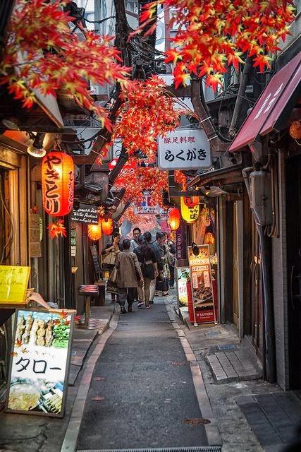 Shinjuku Alley, Toyko, Japan