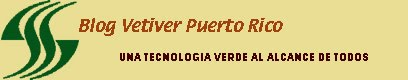 Vetiver Puerto Rico