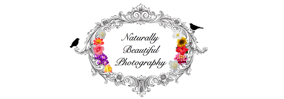 Naturally Beautiful Photography
