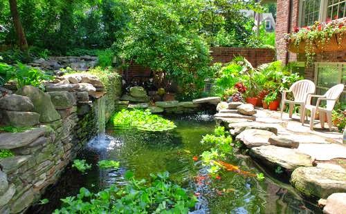 desain kolam belakang rumah