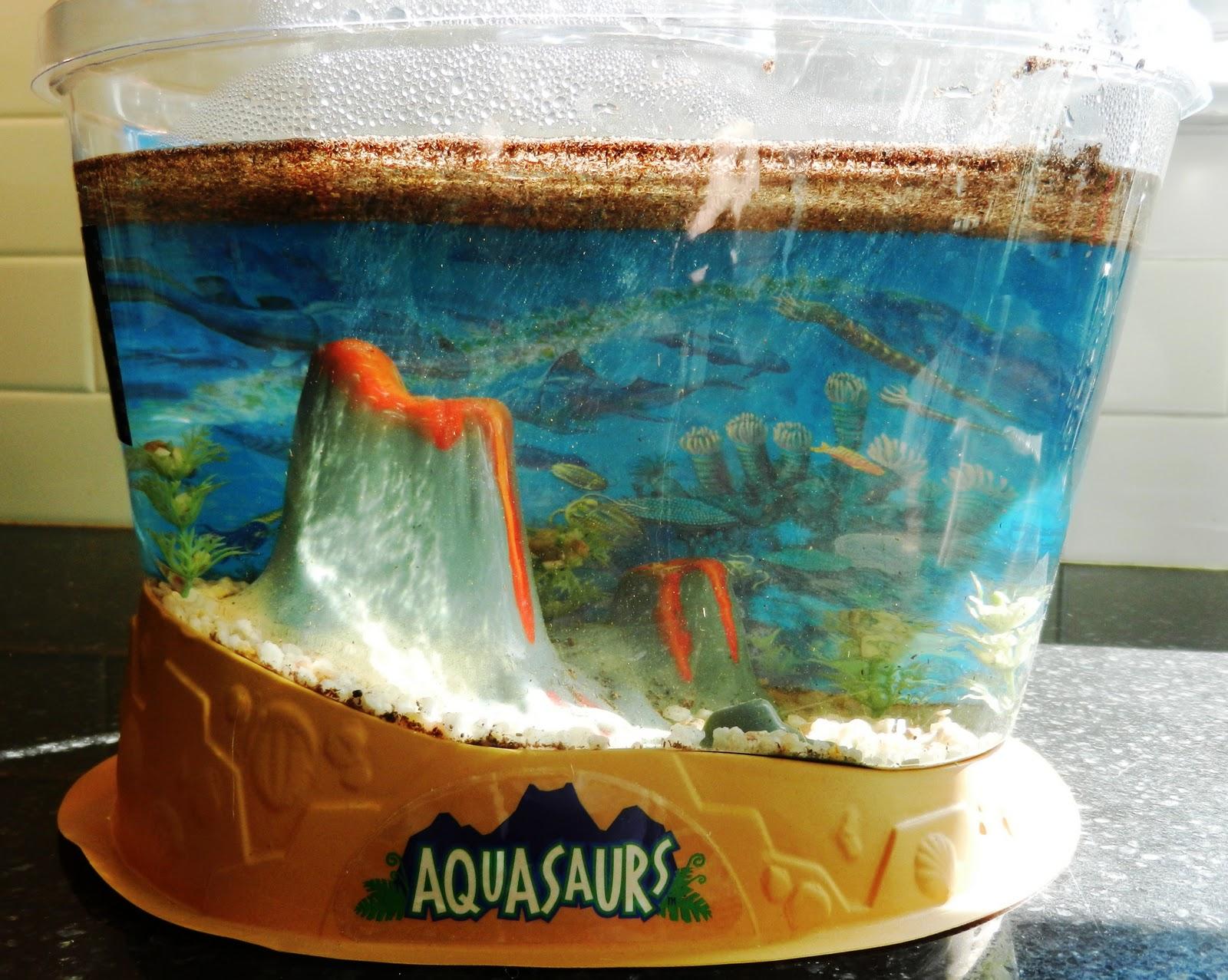 Sea Monkeys  Pets At Home
