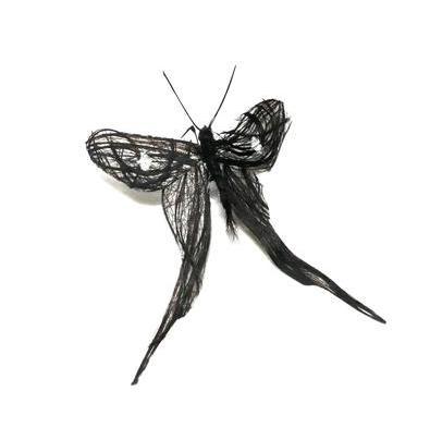 لوحات فنية لأوراق الشجر وبعض الأعمال الفنية من شعر  Hair-insects4
