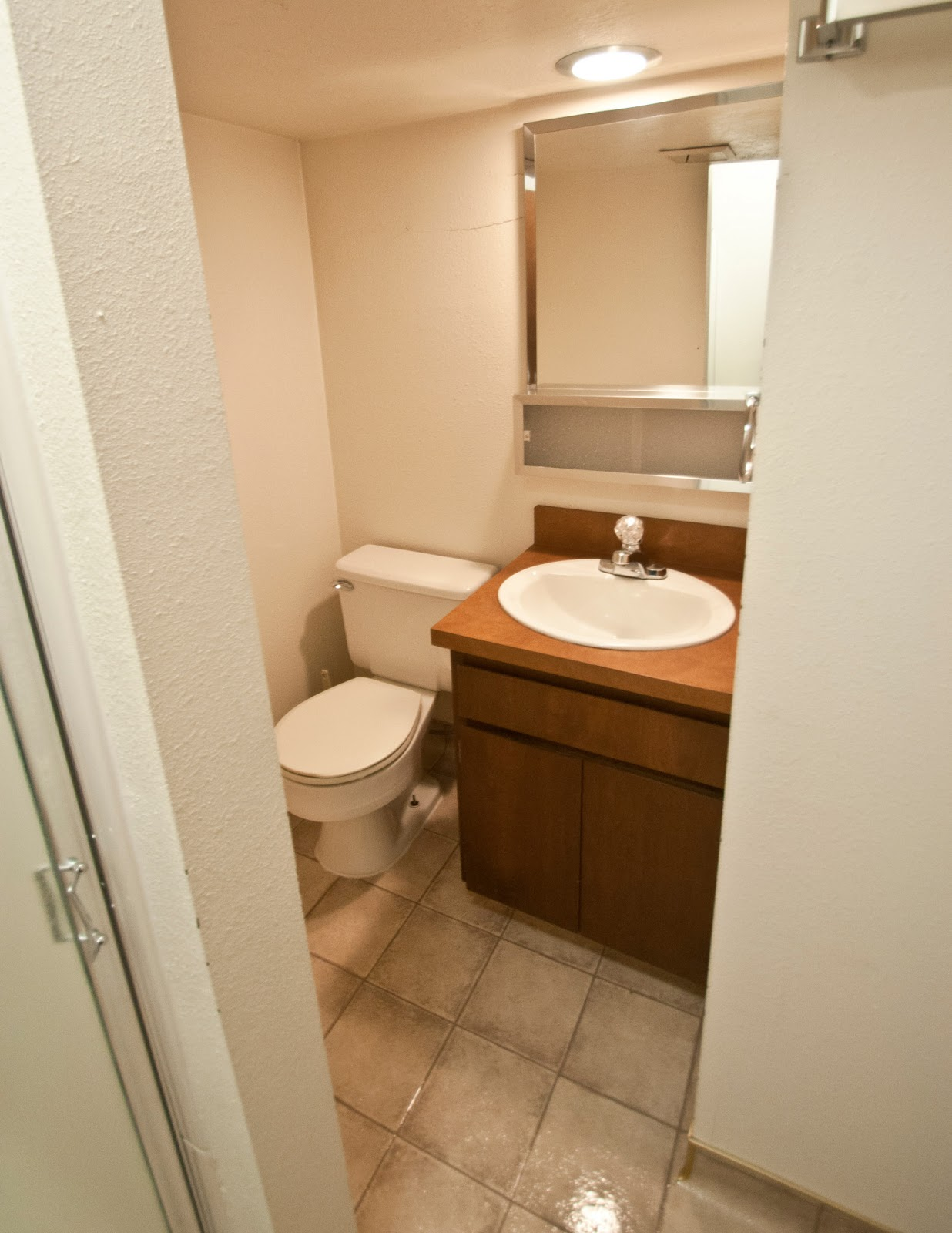 1246 evergreen drive basement bathroom