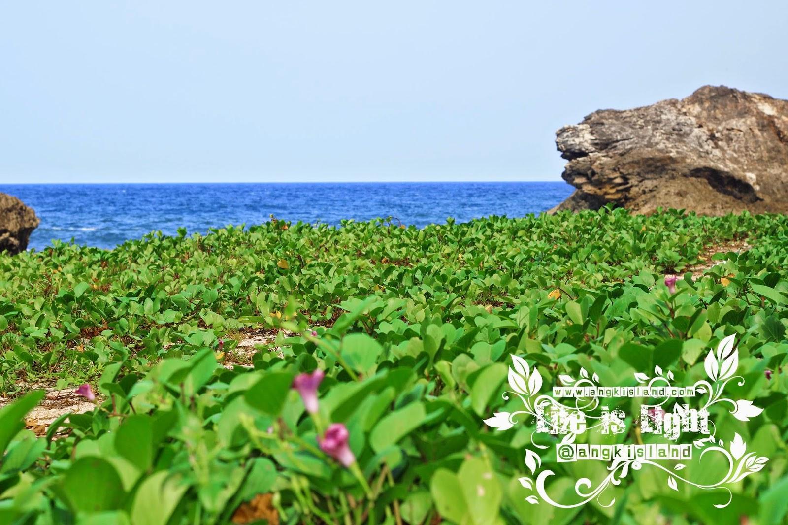 Pantai Perawan gunung kidul wohkudu