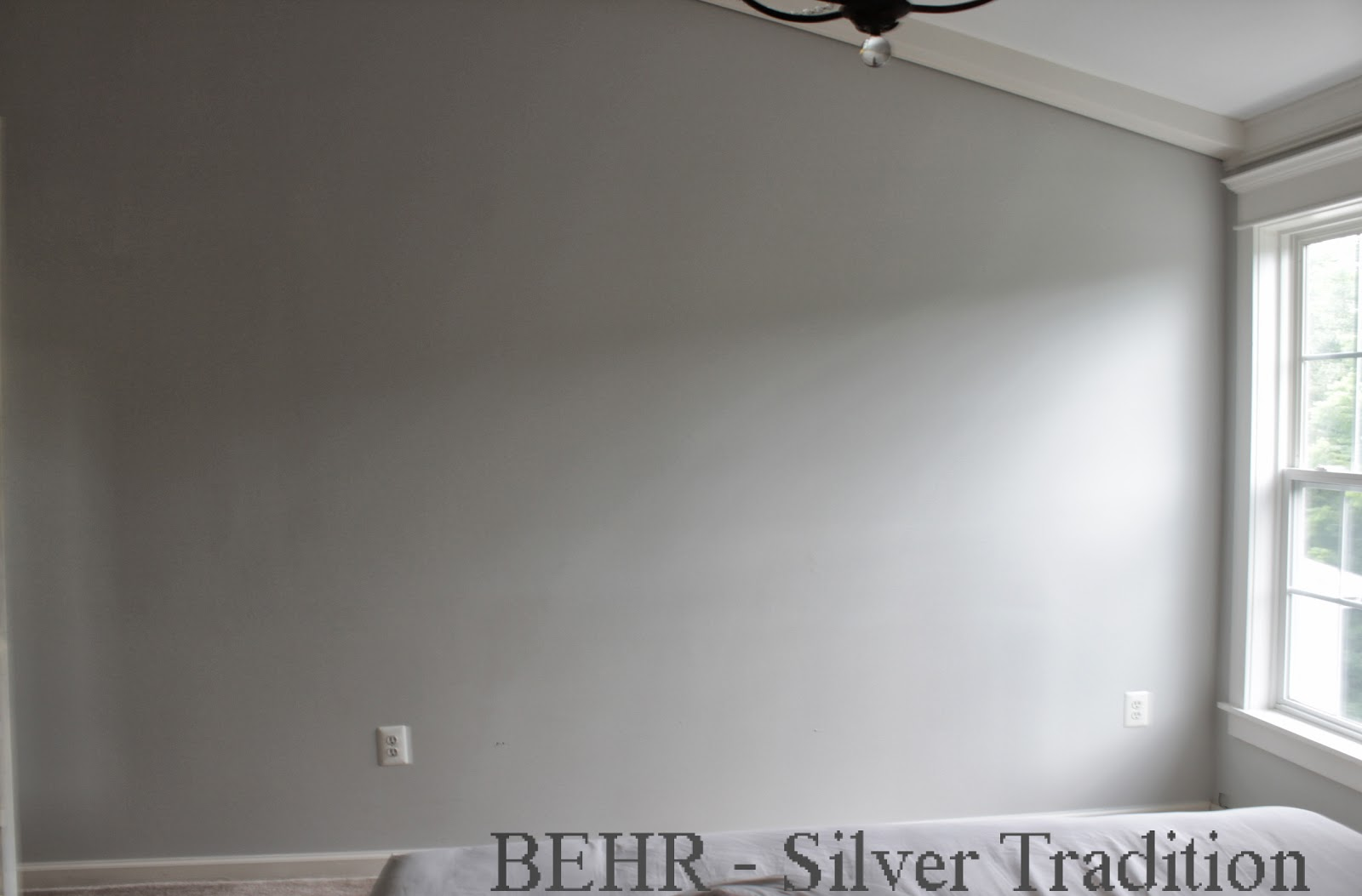 Behr Silver Tradition Flat 1600 1053 Home