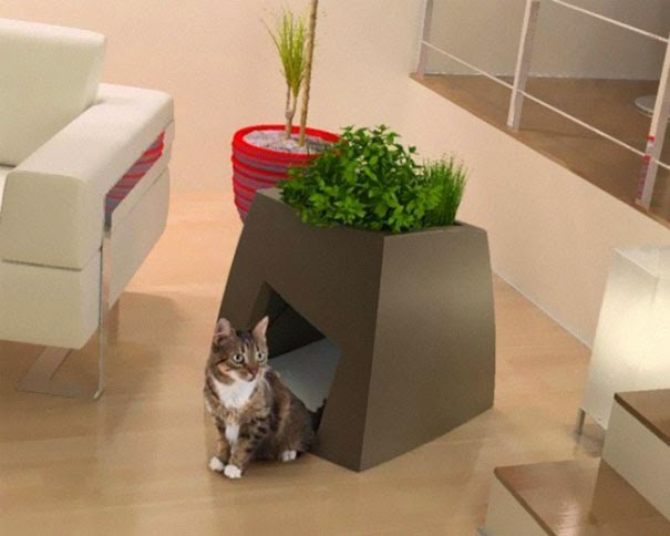 creative decor for cats1