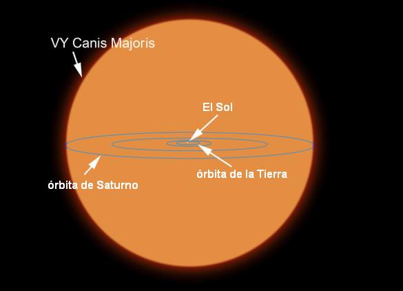 Un gigante entre gigantes: VY Canis Majoris - Ciencia y