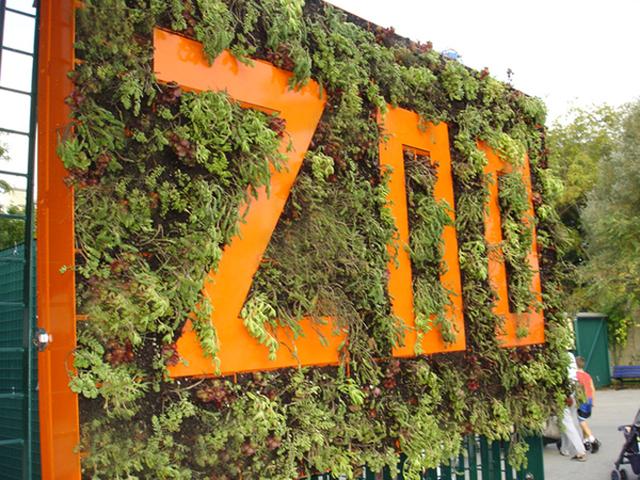 Lindos projetos de jardins verticais