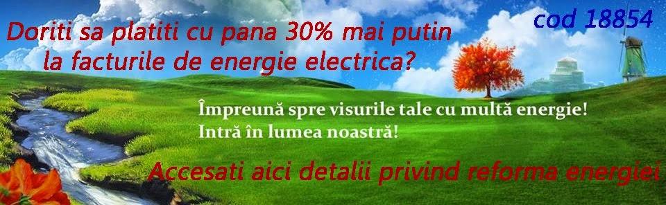 Reforma energiei. Energaz