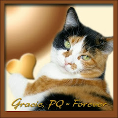 Gracie, The Pee Queen RIP.