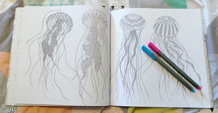 Animal Kingdom Coloring Book Jellyfish Coloring Pages