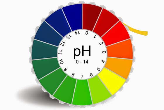 ph value Ph value shipping is one of the best logisitics service provider in kochi.