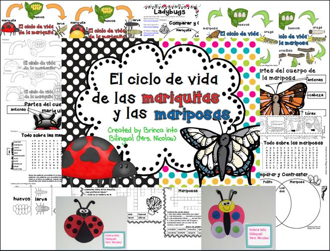 https://www.teacherspayteachers.com/Product/Unidad-Ciclo-de-Vida-Mariquita-y-Mariposa-Grados-1-3-1168825
