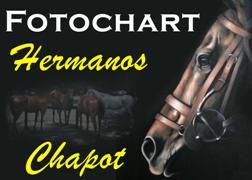 ► FOTOCHART CHAPOT