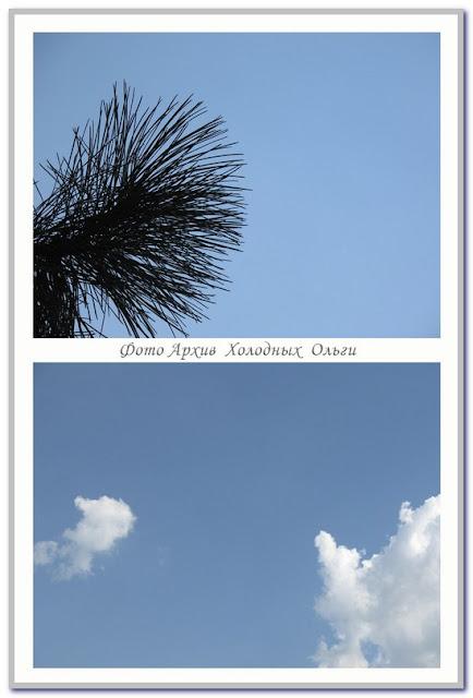 небеса обетованные цвет голубой