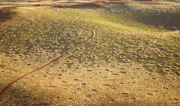 Fenomena Lingkaran Aneh di Gurun Namibia