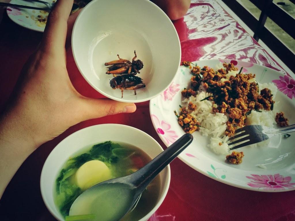 thai-massage-school-food