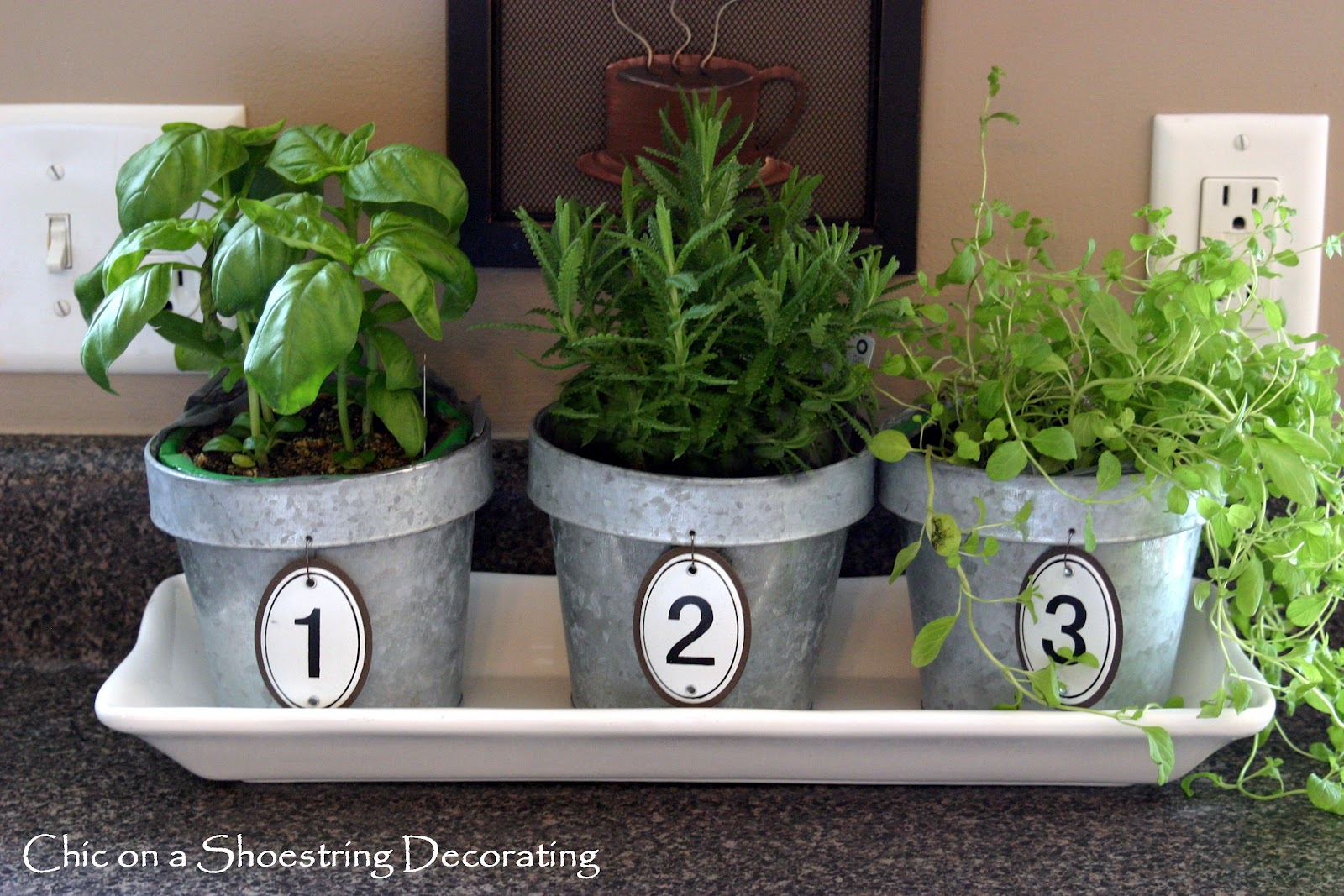 Chic on a shoestring decorating kitchen herbs in numbered for Kitchen herb garden