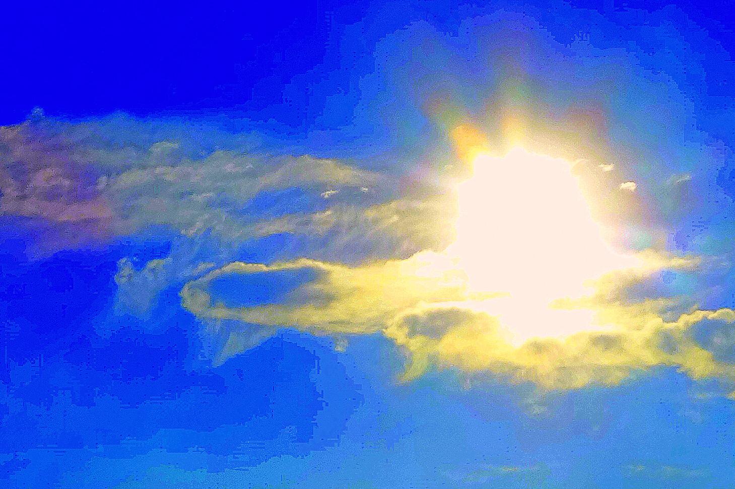 Good Day Sunshine Nc : Observations workshop september