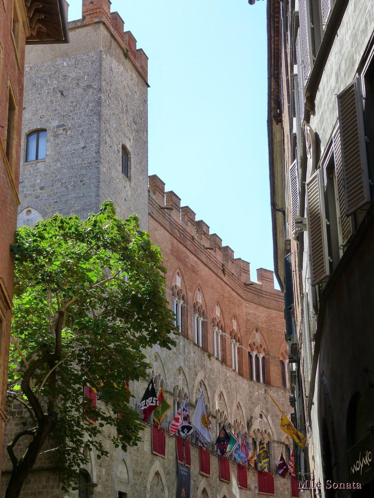 Voyage Italie Sienne Palazzo Chigi Saracini